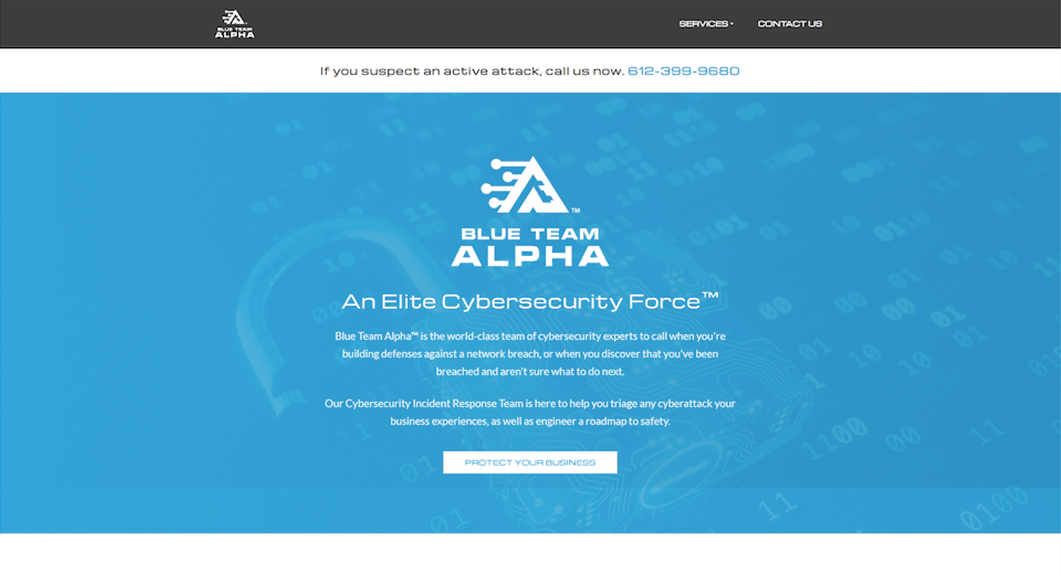 Home page for Blue Team Alpha before redesign